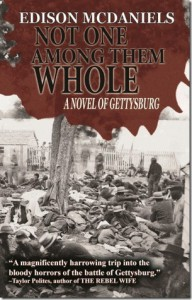 Not One Among Them Whole: A Novel of Gettysburg - Edison McDaniels