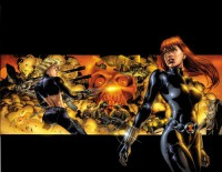 Black Widow: The Itsy-Bitsy Spider - Devin Grayson, Greg Rucka, J.G. Jones, Scott Hampton