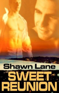 Sweet Reunion - Shawn Lane