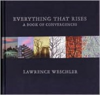 Everything That Rises: A Book of Convergences - Lawrence Weschler