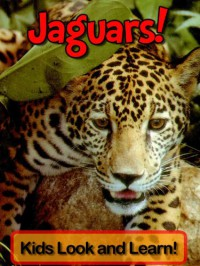 Jaguars! Learn About Jaguars and Enjoy Colorful Pictures - Look and Learn! (50+ Photos of Jaguars) - Becky Wolff