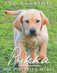 Pukka: The Pup After Merle - Ted Kerasote