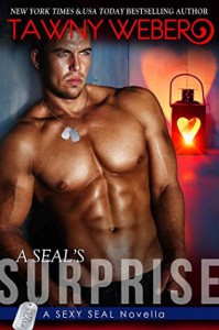 A SEAL's Surprise (Sexy SEAL Series Book 3) - Tawny Weber