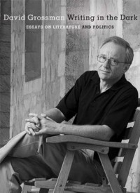 Writing in the Dark: Essays on Literature and Politics - David Grossman, Jessica Cohen