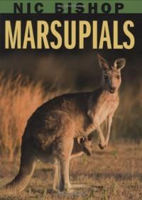 Nic Bishop: Marsupials - Nic Bishop