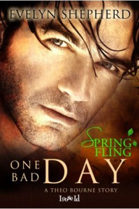 One Bad Day: A Theo Bourne Story - Evelyn Shepherd