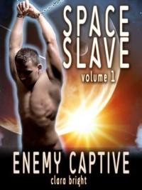 Enemy Captive (Space Slave, #1) - Clara Bright