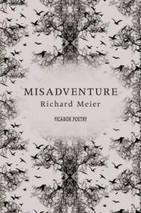 Misadventure - Richard Meier