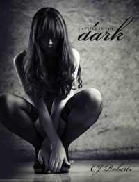 Captive in the Dark (The Dark Duet, #1) - C.J. Roberts
