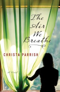 The Air We Breathe - Christa Parrish