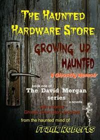 The Haunted Hardware Store (The David Morgan series Book 1) - Frank Roberts