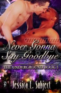 Never Gonna Say Goodbye - Jessica E. Subject