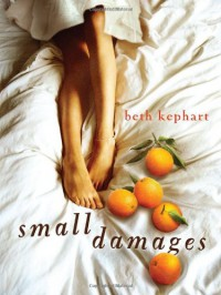 Small Damages - Beth Kephart