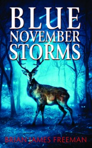 Blue November Storms - Brian James Freeman