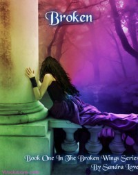 Broken (Broken Wings Book 1) - Sandra  Love
