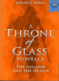 The Assassin and the Healer - Sarah J. Maas