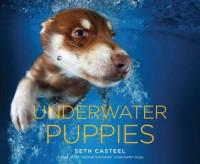 Underwater Puppies - Seth Casteel
