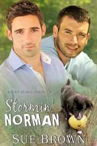 Stormin' Norman - Sue  Brown