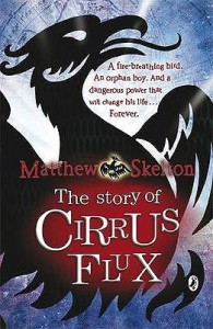 The Story of Cirrus Flux - Matthew Skelton