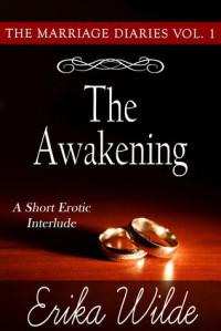 The Awakening - Erika Wilde, Janelle Denison