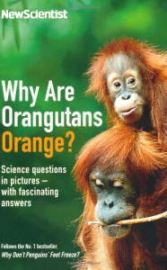 Why Are Orangutans Orange? - Mick O'Hare