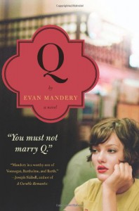 Q: A Novel - Evan Mandery