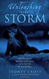 Unleashing the Storm - Sydney Croft