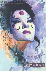 Kabuki, Vol. 6: Scarab, Lost in Translation - David W. Mack, Rick Mays, Paul Pope
