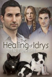 The Healing of Idrys - T.N. Tarrant