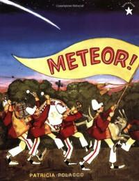 Meteor! - Patricia Polacco