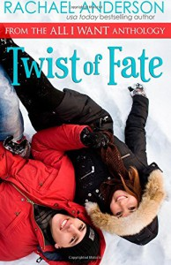 Twist of Fate (A Holiday Romance Novella) - Rachael Anderson