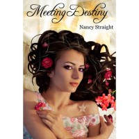 Meeting Destiny (Destiny, #1) - Nancy Straight
