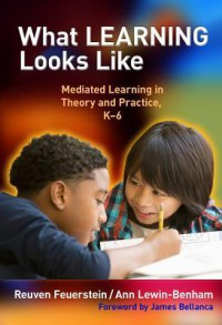 What Learning Looks Like: Mediated Learning in Theory and Practice, K-6 - Reuven Feuerstein, Ann Lewin-Benham