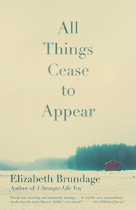 All Things Cease to Appear - Elizabeth Brundage