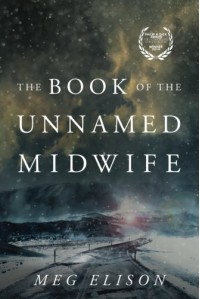 The Book of the Unnamed Midwife (The Road to Nowhere) - Meg Elison