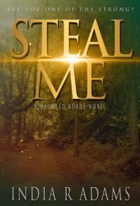 Steal Me - India R. Adams
