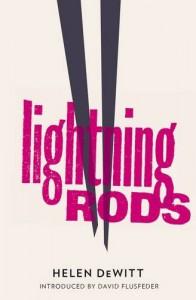Lightning Rods - Helen DeWitt, David L. Flusfeder