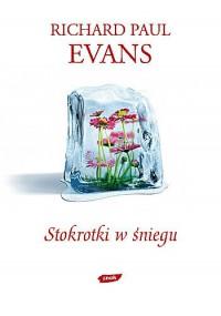 Stokrotki w śniegu -