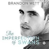 The Imperfection of Swans - Brandon Witt