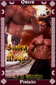 Stolen Magic - A.J. Llewellyn