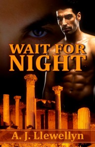 Wait for Night - A.J. Llewellyn