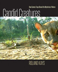 Candid Creatures: How Camera Traps Reveal the Mysteries of Nature - Roland W. Kays