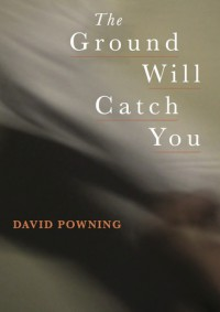 The Ground Will Catch You - David Powning