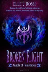 Broken Flight: Angels of Punishment (Volume 1) - Elle J Rossi
