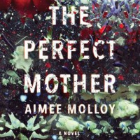 The Perfect Mother - Aimee Molloy, Cristin Milioti