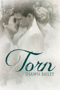 Torn - Shawn Bailey
