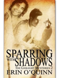 Sparring With Shadows - Erin O'Quinn