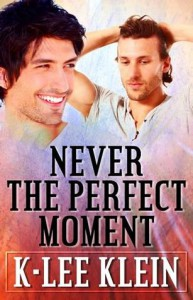 Never The Perfect Moment -  K-lee Klein