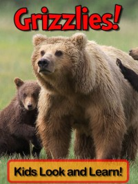 Grizzly Bears! Learn About Grizzly Bears and Enjoy Colorful Pictures - Look and Learn! - Becky Wolff