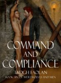 Command and Compliance - Tadgh Faolan
